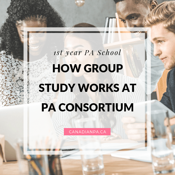 HOW GROUP STUDY WORKS physician assistant aurthi pa consortium